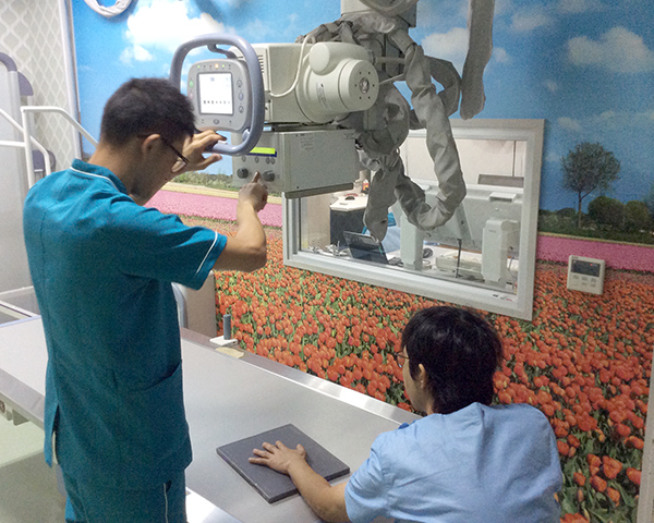 体の骨を撮影します。X線照射量は微量で結果は瞬時に診察室のモニターに表示されます。